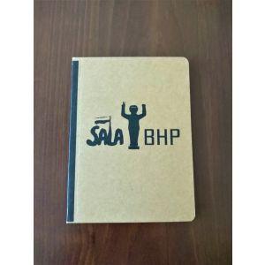 Notes Sala BHP